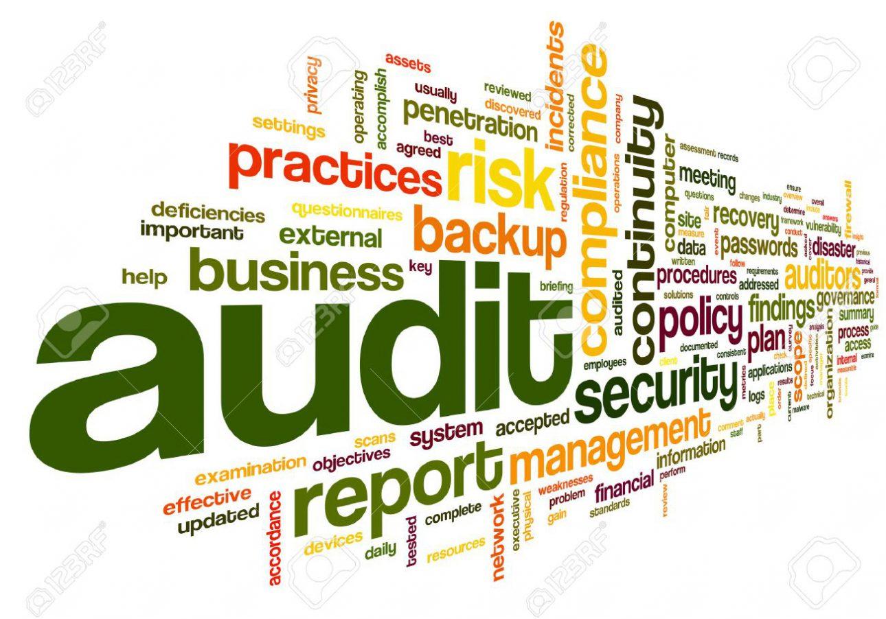 QMIS Audit Picture